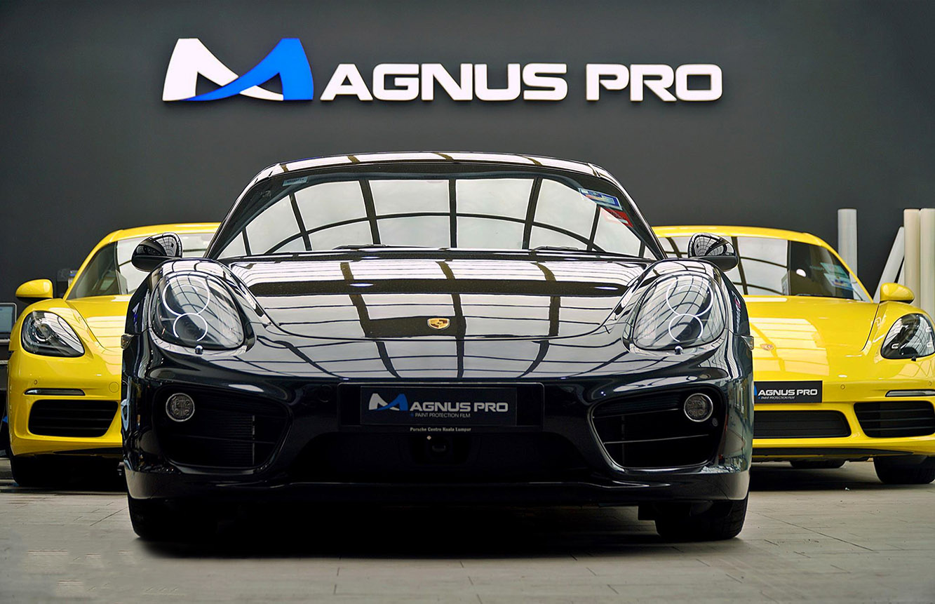 Magnus Pro Europe